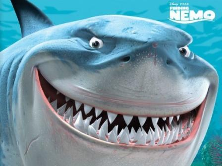 The Endangered Animals of Finding Nemo: Great White Sharks