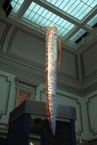 oarfish Smithsonian