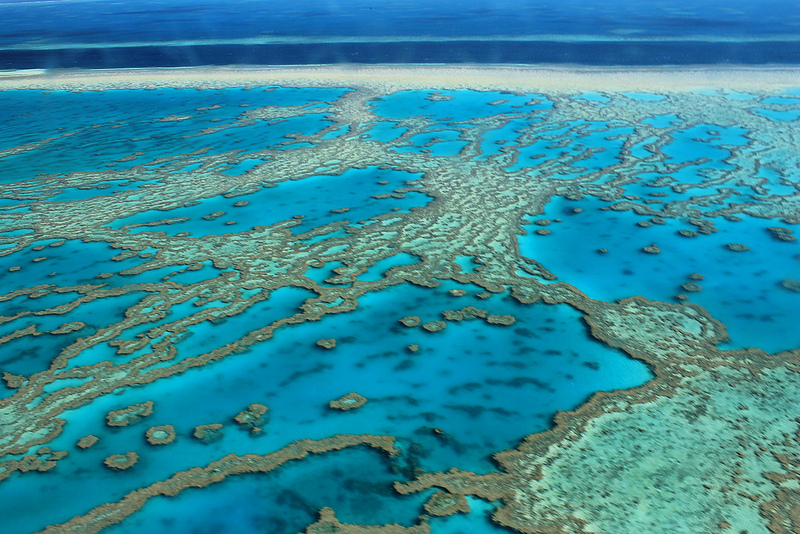 coral reefs of Great Barrier Reef
