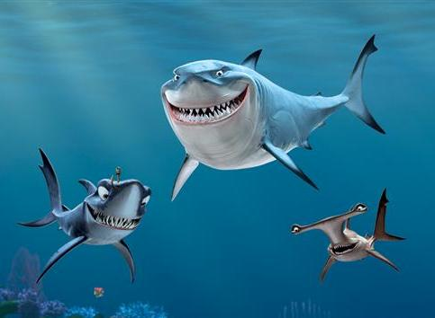 real fish of finding nemo